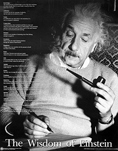 Close Up Albert Einstein Poster The Wisdom of Einstein (40,5cm x 50,5cm)