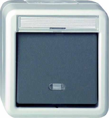 Gira 015631 Wiptaster wisselaar WD Opbouw, grijs
