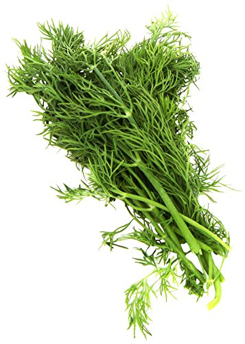 Organic Dill, One Bunch