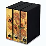 KAOS Archival 2ring Binders with slipcase Spine 8 cm 3 pcs S