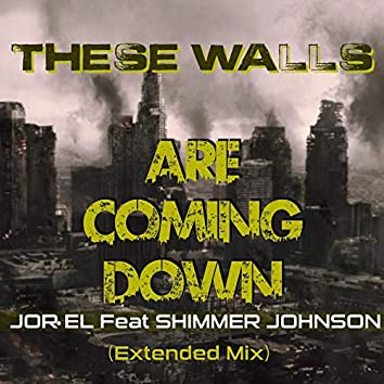 These Walls Are Coming Down (Extended Mix) [feat. Shimmer Johnson]