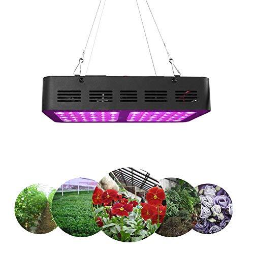 600W Lampe à croissance LED élèvent la lumière pour les plantes d'intérieur Double spectre de commutation complet avec semences UV et serre de serre hydroponique Greenhouse (60 LED)