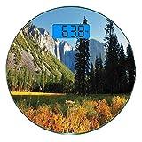 Escala digital de peso corporal de precisión Ronda Yosemite Báscula de baño de vidrio templado ultra delgado Mediciones de peso precisas,Vuelo de pájaros sobre las montañas Parque Nacional de Yosemite