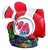 Impexit - Palla di neve con pesce Clown decorazione in resina 9,7/5,8/10 cm
