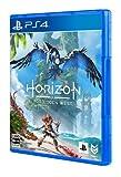 【特典】Horizon Forbidden West PS4版(【早期購入封入特典】プロダクトコード)