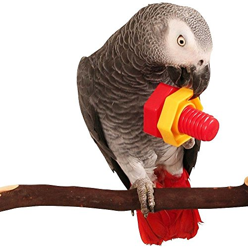 Parrot Essentials 720025 Jumbo Nüsse & Schrauben Papagei Puzzle Spielzeug 2-Teilig, 80 g