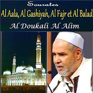Sourates Al Aala, Al Gashiyah, Al Fajr et Al Balad (Quran)