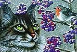 dxycfa Kit de pintura por números DIY Pintura al óleo Gato Animal Pájaro Kits de pintura por números para adultos Niños Principiantes para el hogar Sala de estar Oficina Navidad40x50cm Sin marco