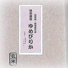 特別栽培 ゆめぴりか 玄米 5kg×2(天恵農場)