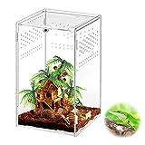 Victop Caja de alimentación para insectos de acrílico, caja de cría de reptiles transparente, diseño antifugas, para barbacoas arañas, lagarto, bárbaro, caracoles, geckos Horned Frog (12 x 12 x 20 cm)