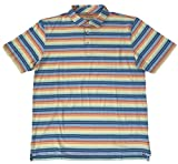 PETER MILLAR Men's Cannon Beach Seaside WASH Rainbow Strip S/S PIMA Cotton Polo Shirt (Large)