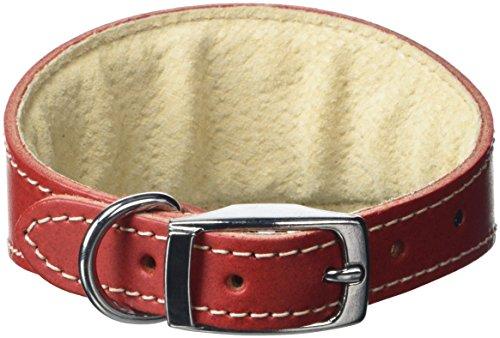 BBD Pet Products Whippet Halsband, Einheitsgröße, 1,9 x 25,4 bis 30,5 cm, Rot