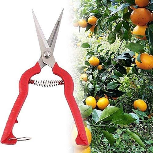 Gardening Hand Pruner Pruning Shear,Plant Pruning Scissors Garden Cutter Gardening Bonsai Tools Grass Flower Shears Secator Grafting pruner Hand Pruner Tool,S