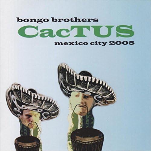 The Bongo Brothers
