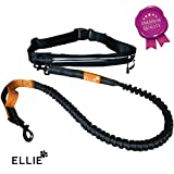Ellie Premium Jogging Hundeleine mit verstellbarem Bauchgurt - 175cm Dehnbare Laufleine für kleine...