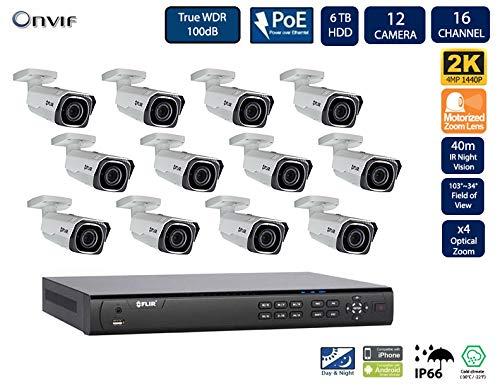 Digimaliseerde Flir IP Security Camera System met Dnr400P Serie 2 harde schijf slots Nvr en Quad HD-motor 4 Mp (2K) met bescherming tegen vandalisme kogelcamera (4 sleuven camera's met 8-kanaals 2Tb NVR) 12 Einschuss Cameras mit 16 Ch 6 TB NVR