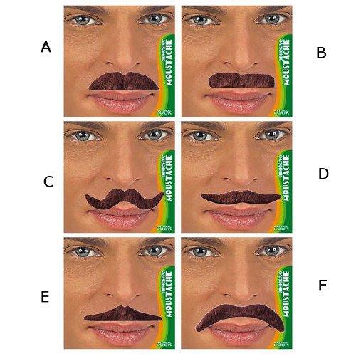 WIDMANN S.R.L., Moustaches Brown ET Dandy