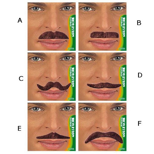 WIDMANN S.R.L., Moustaches Brown ET Dandy