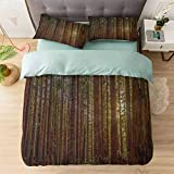 100% Washed Microfiber 3pcs Bedding Set, Redwood Forest in California USA Nature Outdoors Landscape Woods Park, Soft and Breathable with Zipper Closure & Corner Ties, Redwood Green Yellow