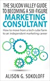 The Silicon Valley Guide to Becoming a Six-Figure Marketing Consultant: How to move from the Tech Cube to an Independent Marketing Career (English Edition)