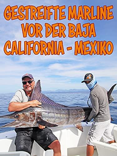 Gestreifte Marline vor der Baja California - Mexiko