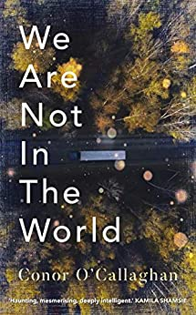 We Are Not in the World by [Conor O'Callaghan]