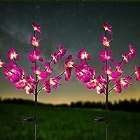 2 Pack HeyMate Solar Garden Decorative Lights