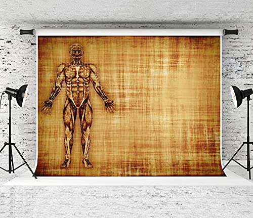 MATEKULI Portable Backdrop Photography an Old Parchment Featuring The Muscles of The Human Body Colored Fashion Photography Picture Backgrounds for Indoor Outdoor Studio Photo Wall Backdrops 10x8FT