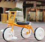 Shuang Andador, Andador con Ruedas Plegable para niños Triciclo Bicicleta Cochecito de bebé Inflable Coche de bebé(Yellow)