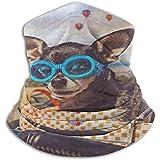 Diadema Pasamontañas Lindo Perro Chihuahua En Bicicleta Canasta Cuello Calentador Casco Forro Hatliner