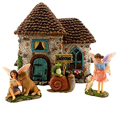 Small Fairy Garden Kit with Pine Cone Roof House