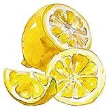 Wandtattoo Küche Obst Gemüse Wandtattoo Tolles Zitronen