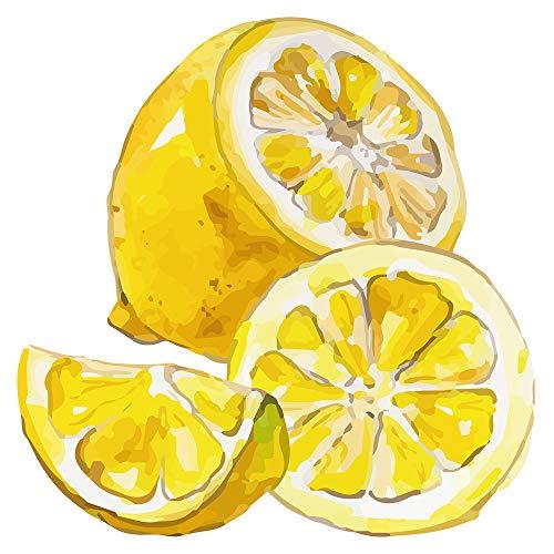 Wandtattoo Küche Obst Gemüse Wandtattoo Tolles Zitronen Motiv mit kräftigem gel
