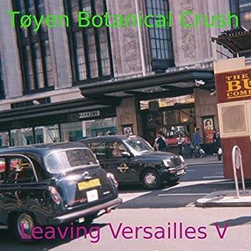 Leaving Versailles V