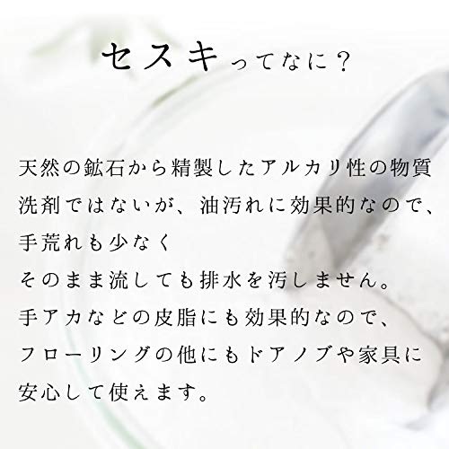 【Amazon.co.jp限定】レックセスキの激落ちくんシートフローリング用20枚入×48個(960枚)大容量ケース販売