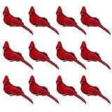 Atroy 12 pájaros de Navidad, pájaro rojo de Navidad, adornos de...