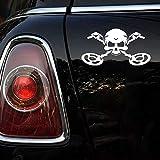 HAIYOUSHANGMAO Detectores de Coche de la Etiqueta Cráneo Divertido con el Metal Automóviles Motocicletas Accesorios Exterior Pegatina de Vinilo de la Ventana (Color Name : White, Size : 18cm X 9.8cm)