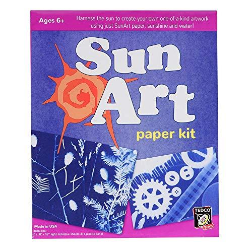 /águila o le/ón coloridos Elephant /& Sun Without Frame 40,6 x 50,8 cm Kit de pintura por n/úmeros para adultos y ni/ños de YEESAM Art; pintura de elefante