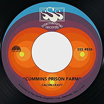 Cummins Prison Farm / Brought You to the City
