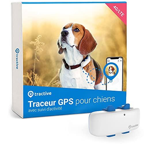 Tractive Traceur GPS Chien (2021) pour Collier Chien, Ne Perdez Plus Votre Chien, Suivi GPS et d Activité 24 h 24