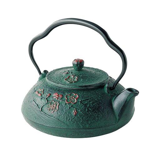 TOKYO MATCHA SELECTION - Nanbu Tetsubin - Shinonome Green (Dawn design) 0.4 Liter - Japanese cast Iron teapot from Iwate Japan [Standard ship by EMS: with Tracking & Insurance]