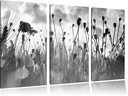 Pixxprint Mohn im Weizenfeld / 3-Teilig/Gesamtmaß 120cm Leinwandbild bespannt auf Holzrahmen/Wandbild Kunstdruck Dekoration