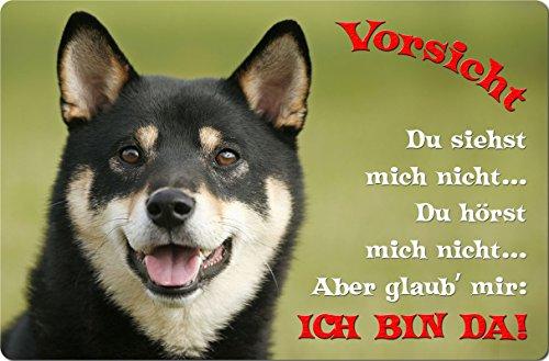 +++ SHIBA INU - Metall WARNSCHILD Schild Hundeschild Sign - SBA 09 T2