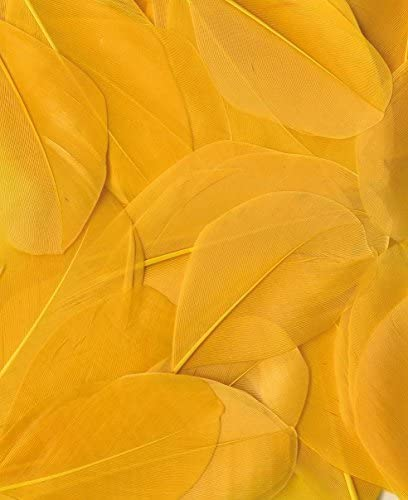 Artemio 13030028 Smooth 3gr Sales of Max 50% OFF SALE items from new works Yellow Feathers