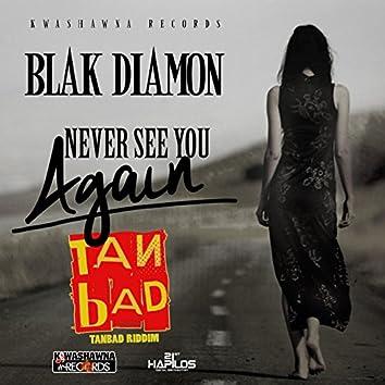 Never See You Again (Tan Bad Riddim)