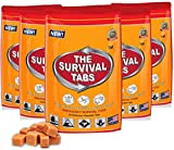 Survival Tabs - 10-days food supply - emergency survival food for outdoor activities gluten-free, non-GMO The Survival Tabs 25 years shelf Life (5 pouches x 24 tablets = 120Tablets/Butterscotch)