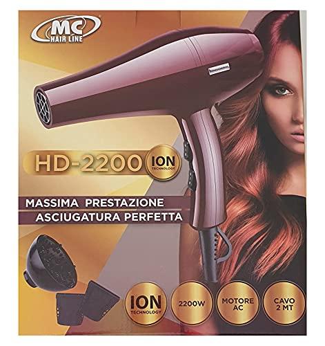 Secador de pelo con motor de larga vida AC con ionizador de 2200 W
