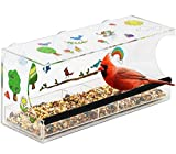 Decorate Your Own Window Bird Feeder Craft Kit - Gifts for Kids Girls and Boys Ages 6 7 8 9 10 Years Old and Up