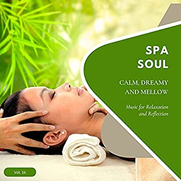 Spa Soul - Calm, Dreamy And Mellow Music For Relaxation And Reflextion, Vol. 16