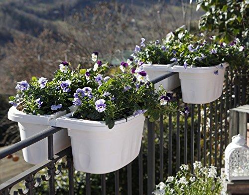 Bama 30232Klunia doppiamente Regolabile, fioriera da Balcone con Serbatoio d  Acqua, Crema, 40x 19.8x 18.5cm